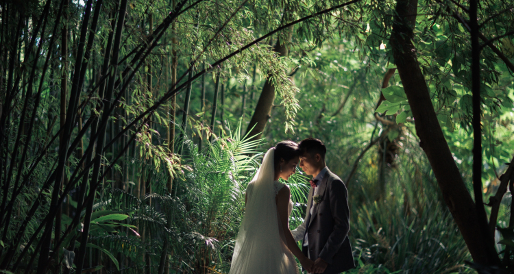 Beautiful Backdrops for Weddings